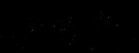 negre-transparent-de-logo-vecto-FJP